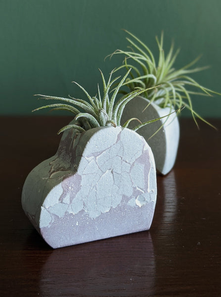 { True Love } Heart Air Plant Holder | Pink and White | Valentine's/Galentine's Exclusive