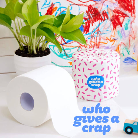 Who Gives A Crap Recycled Toilet Paper | Sequela Store
