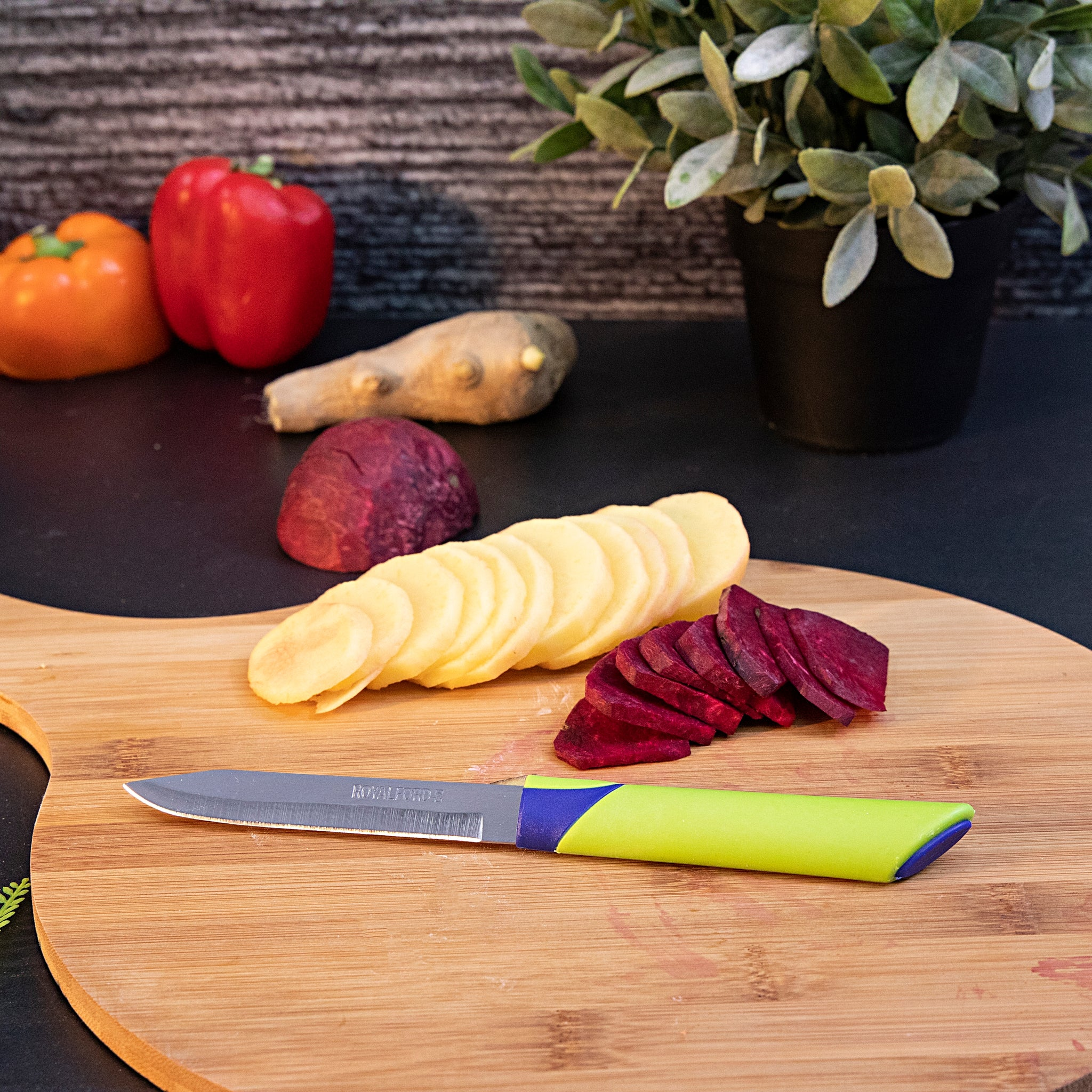Fruit Knife Set 12 Pcs 1X50