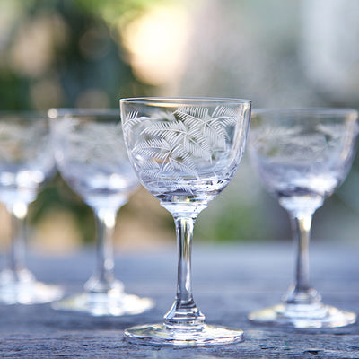 The Vintage List Ferns Liqueur Glasses Set of 6