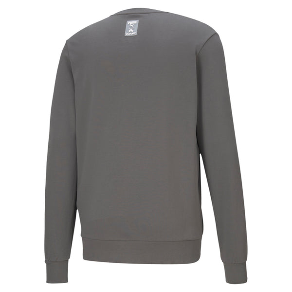 Puma x Cloud9 Disconnect Sweatshirt. Grey.