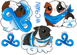 Limited Edition Chibi Guinea Pig #C9WIN Sticker Set