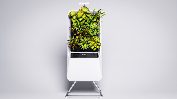 White Respira unit, on stand, with grow light, filled with the vibrant plant selection