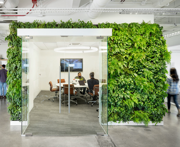 Productive employees working in biophilic designed office