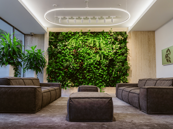 Beautiful commercial living wall in the lobby of The Torontonian
