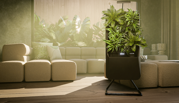 Black Respira unit on stand in warmly lit living room