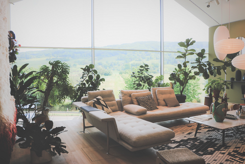 Designed with intention; biophilic designed living space