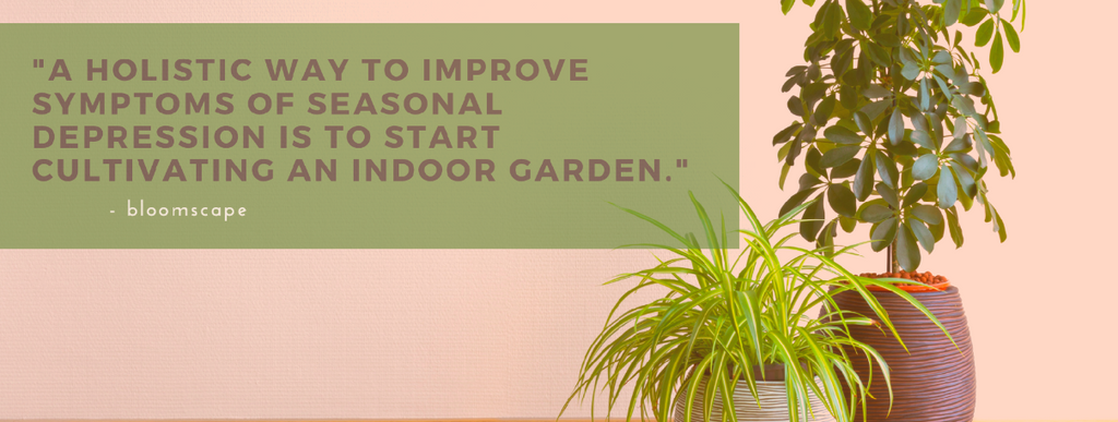 """Quote """"A holistic way to improve the symptoms of seasonal depression is to start cultivating an indoor garden""""."""