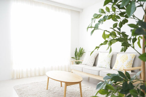 Naturally cleaned healthy home