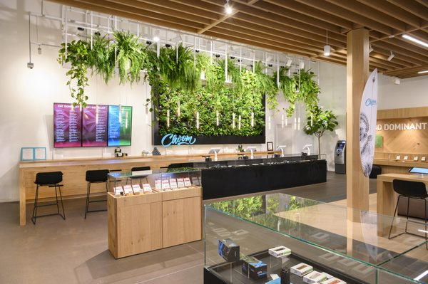Choom Cannabis Living Wall in Niagara store front