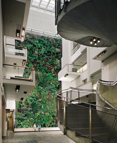 Four-story living wall at the University of Guelph (Humber)