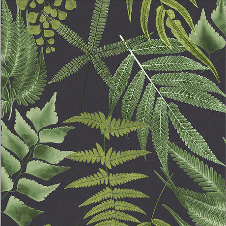 Black background wallpaper with green leaf prints