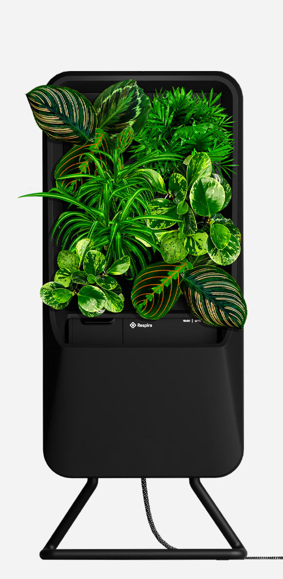 Black Respira unit with Pet-Friendly plant palette, and stainless steel stand