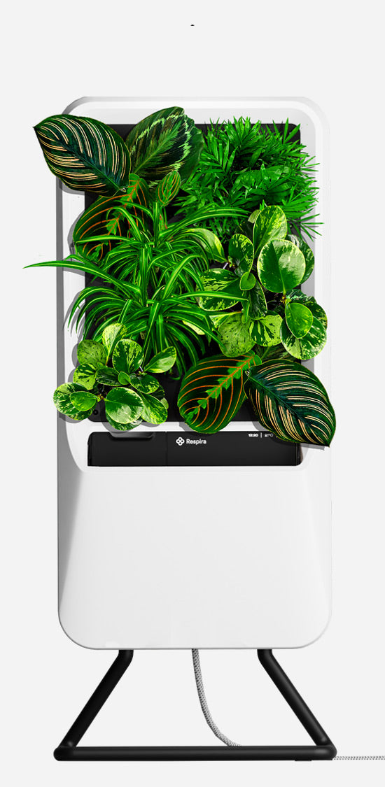 White Respira unit with Pet-Friendly plant palette, and stainless steel stand