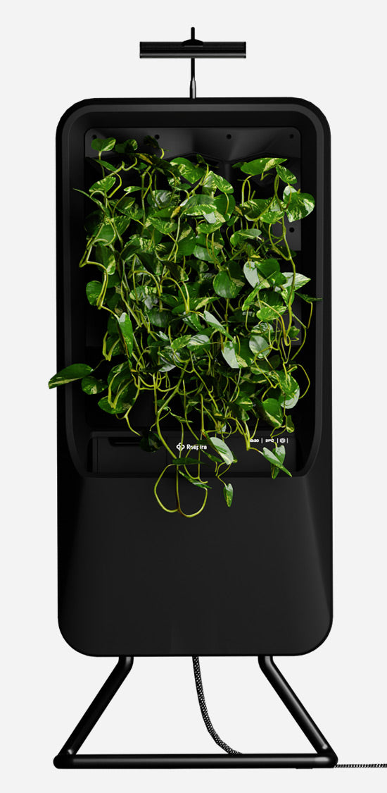 Black Respira unit with Pothos plant palette, stainless steel stand, and energy efficient LED grow light
