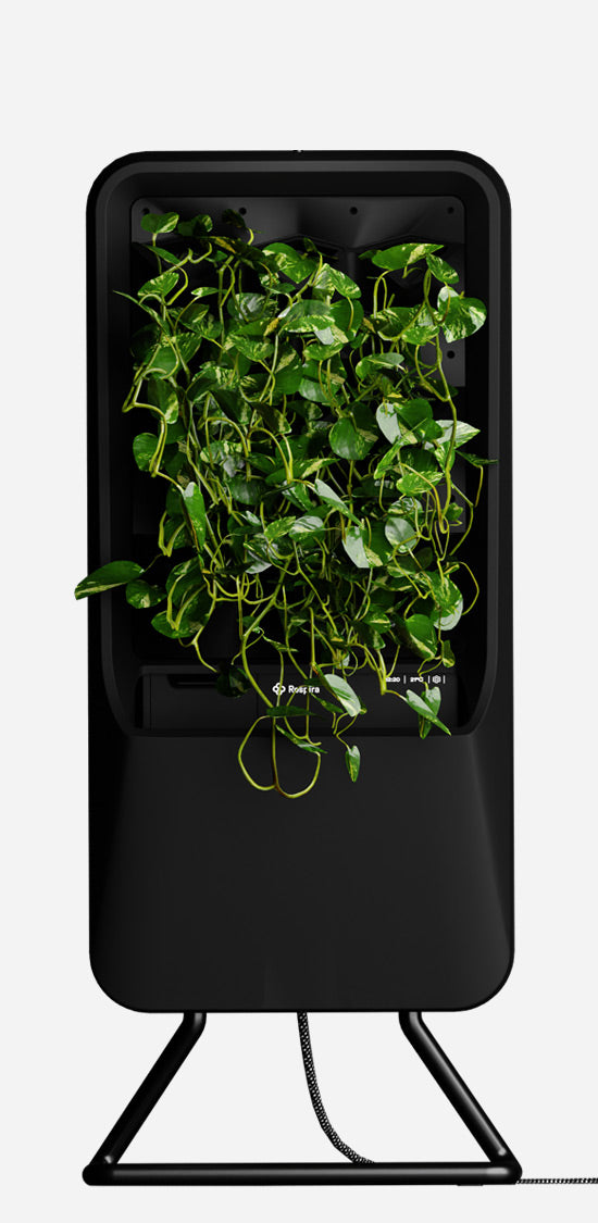 Black Respira unit with Pothos plant palette and stainless steel stand