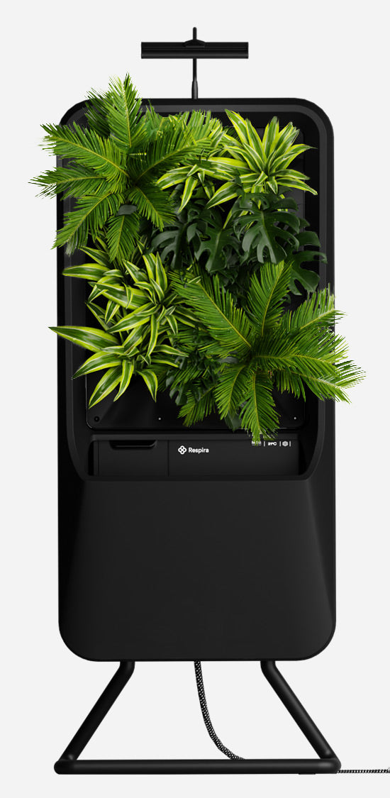 Black Respira unit with Tropical plant palette, stainless steel stand and energy efficient LED grow light