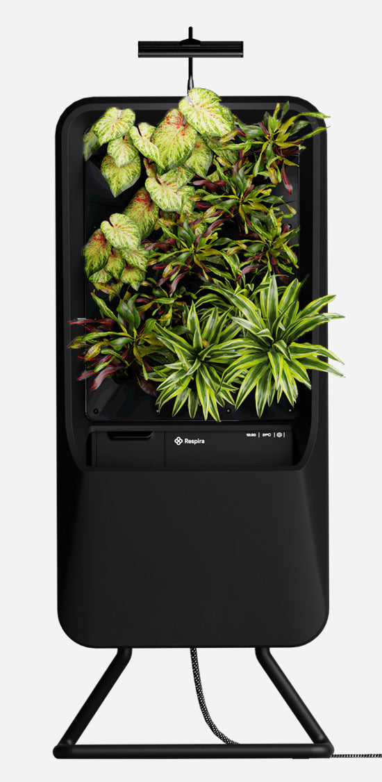 Black Respira unit with Vibrant plant palette, stainless steel stand and energy efficient LED grow light