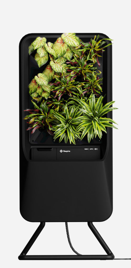 Black Respira unit with Vibrant plant palette, and stainless steel stand