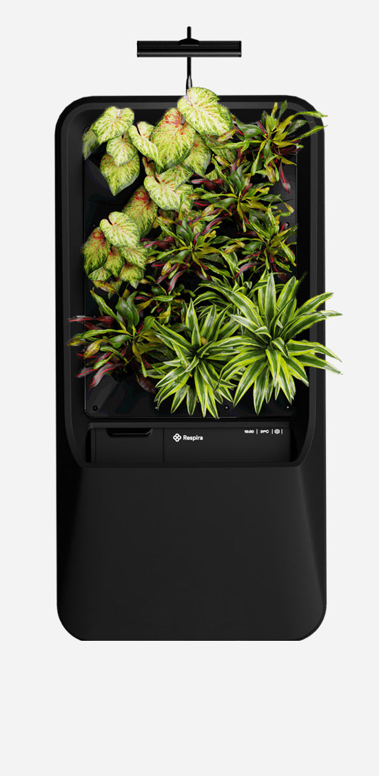 Black Respira unit with Vibrant plant palette, and energy efficient LED grow light