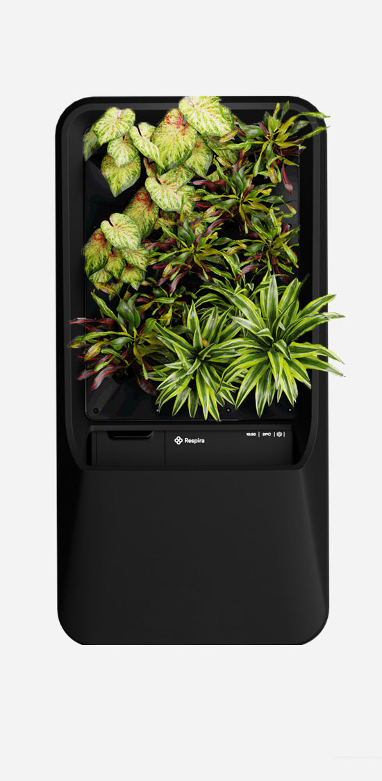Black Respira unit with Vibrant plant palette, stainless steel stand