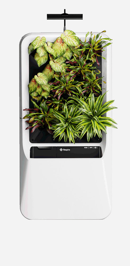 White Respira unit with Vibrant plant palette,  and energy efficient LED grow light