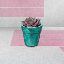 Load image into Gallery viewer, 100% reclaimed / recycled plastic - succulent plant pot made from bottle tops / caps
