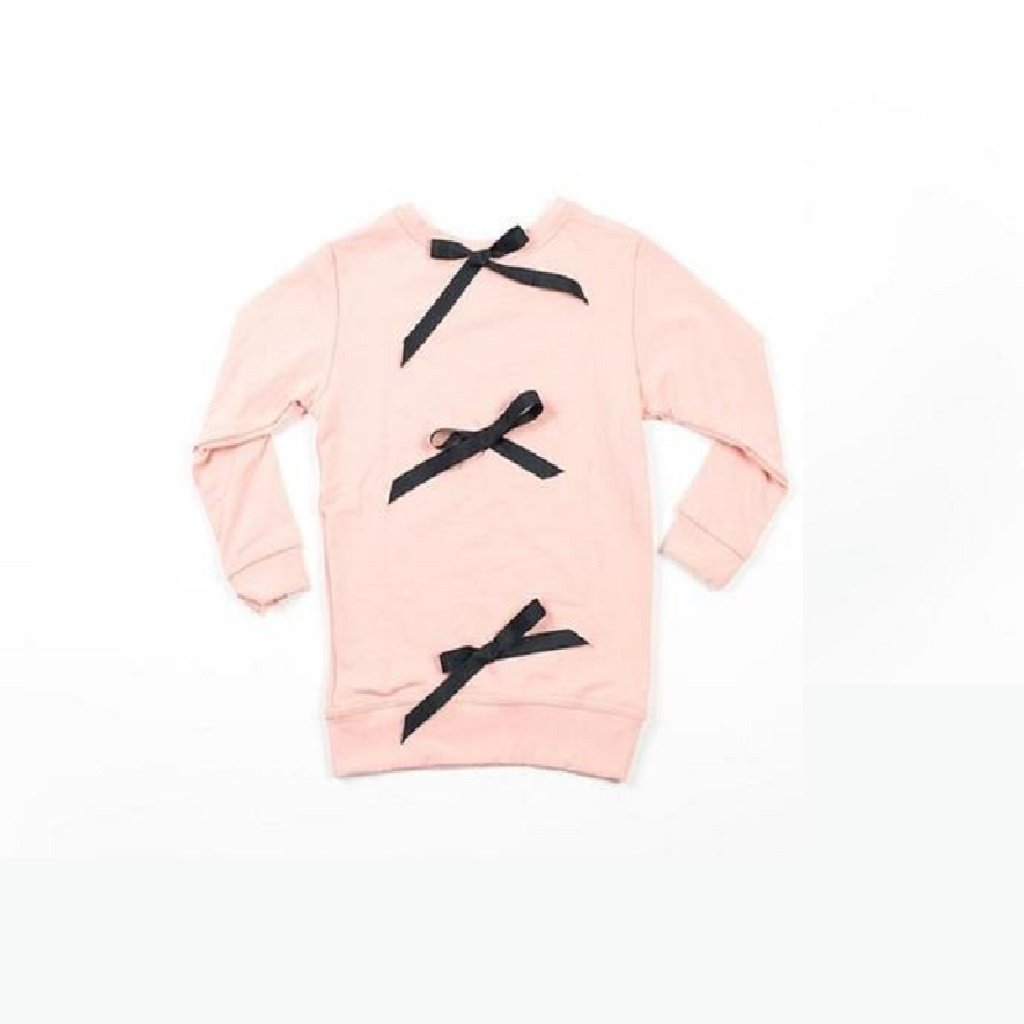 Hudson + Hobbs Bow Knot Sweatshirt in Mellow Rose