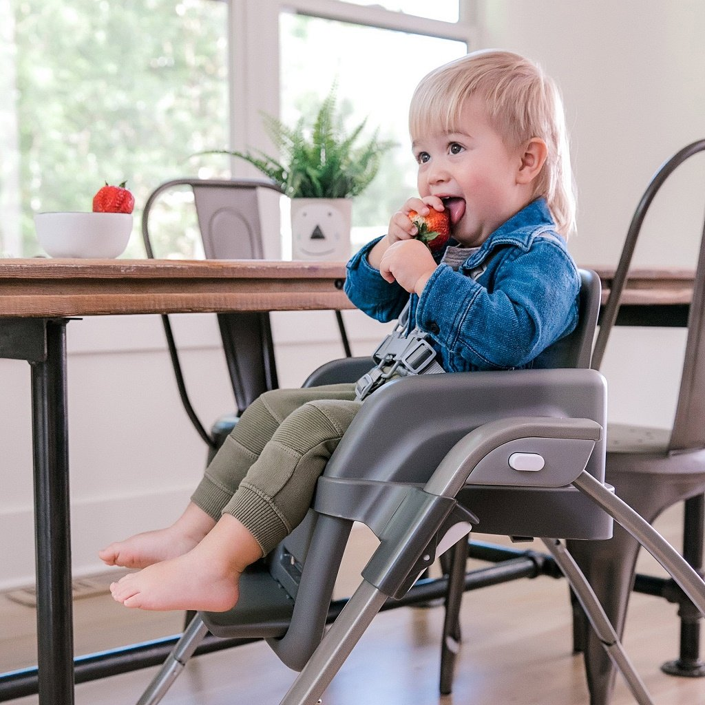 InGenuity SmartServe 4-in-1 Highchair - Connolly