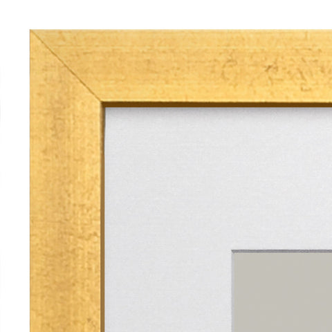 Gold frame for paper prints at Elihalpin.com Eli Halpin
