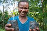 Carbon offset project to offset carbon footprint- Forestry - Agriculture sequestration, Kenya