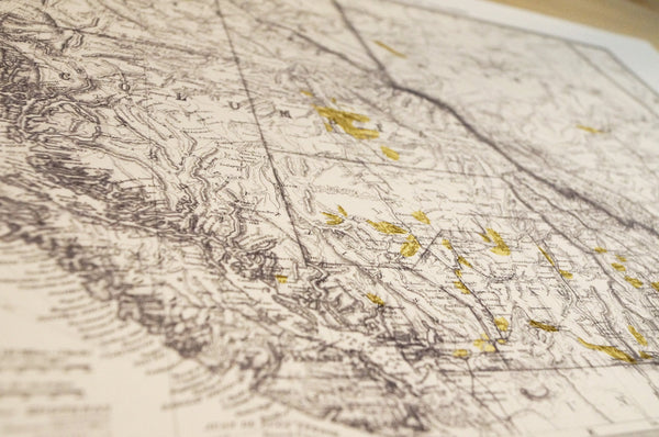 Antique Map Print of the British Columbia Gold Fields