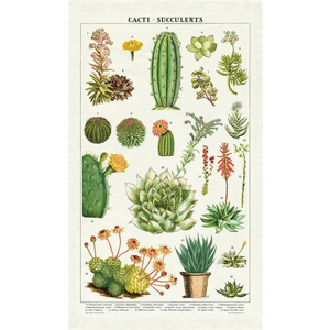 Cavallini Succulents Tea Towel