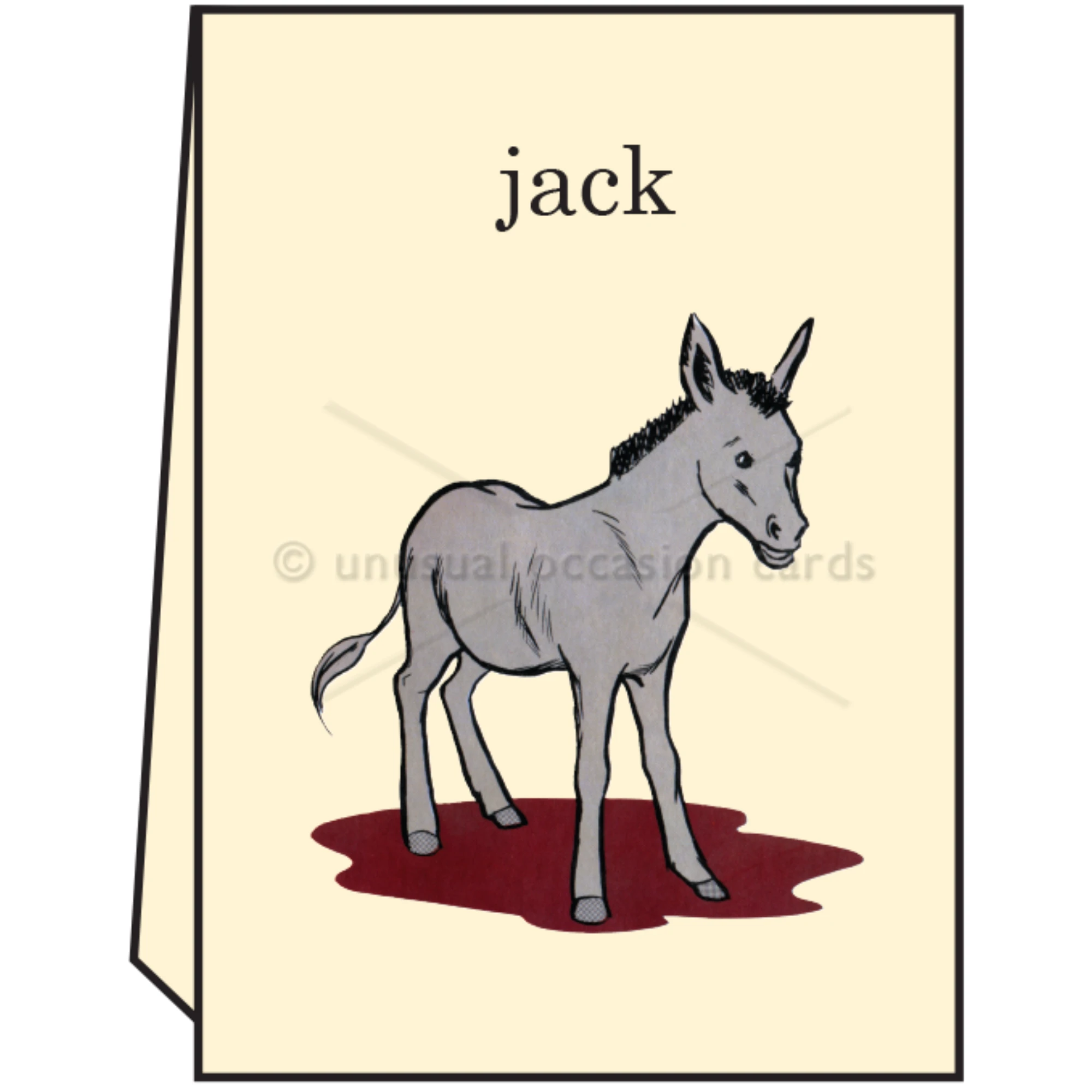 "Pointed Wit ""Jack Ass"" Greeting Card"