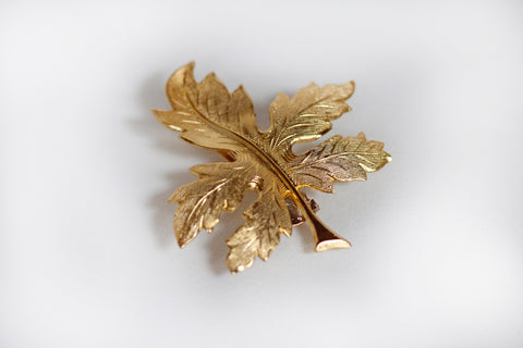 Garden Fig Leaf Barrette