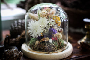 Medium Dried Flowers Glass Dome / Cloche