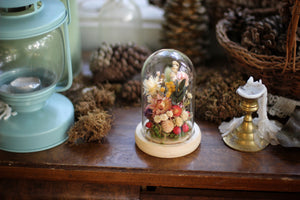 Small Dried Flowers Glass Dome / Cloche