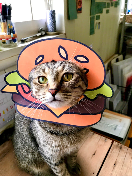DIY burger disguise for cats