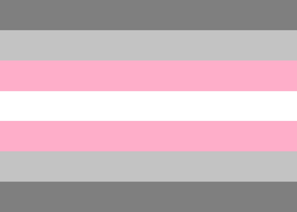 Demigirl Pride Flag - Tully Crafts