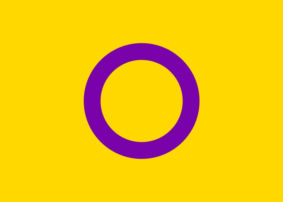 Intersex Pride Flag (yellow/purple) - Tully Crafts