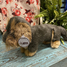 Load image into Gallery viewer, Miniature Wirehaired Dachshund