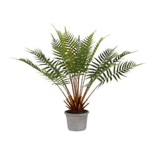 Load image into Gallery viewer, Faux Cycas Palm Plant