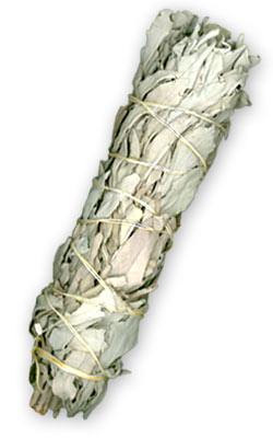 Smudge, White Sage Wand