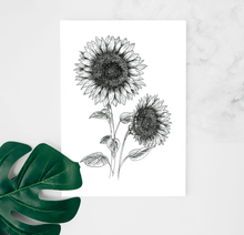 Load image into Gallery viewer, Blackwork Sunflower Art Print by Hof Draws