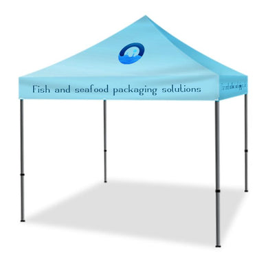 Pop Up Canopy Tent 10 x10 Foot