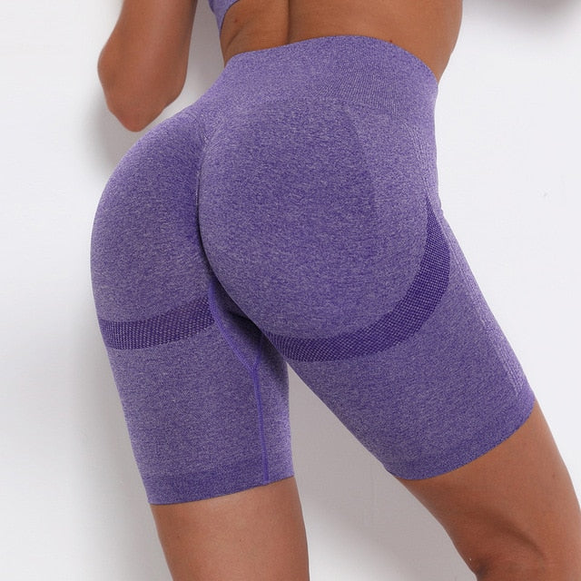Running Gym Pants Energy Seamless Leggings Sport Girl Leggins - Alpha Sticker