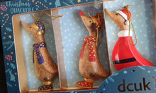Load image into Gallery viewer, DCUK Hanging Christmas duck decoration set