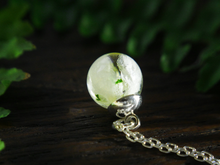 Load image into Gallery viewer, Real snowdrop sterling silver resin 18 inch necklace