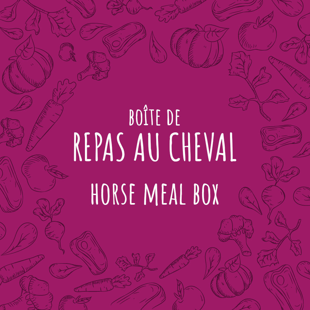 Horse Meal Box