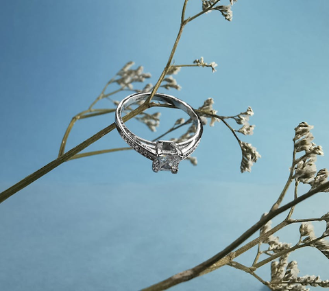 A silver and diamond ring hanging on the branch of a small plant.